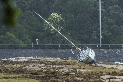 A yacht has been thrown up onto the beach at Okahu Bay during the January summer storm.