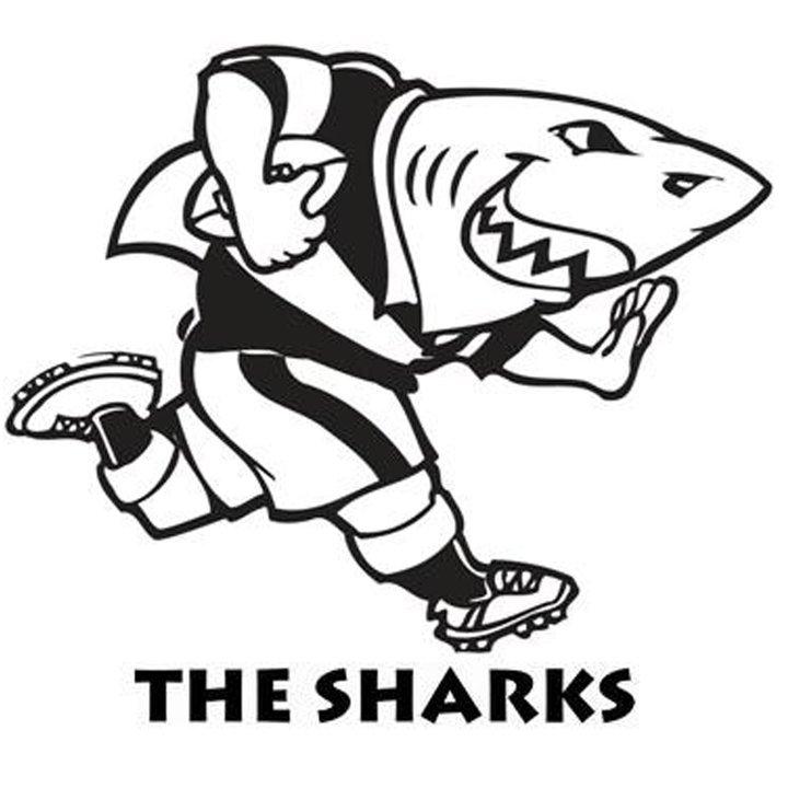 Recap Crusaders V Sharks